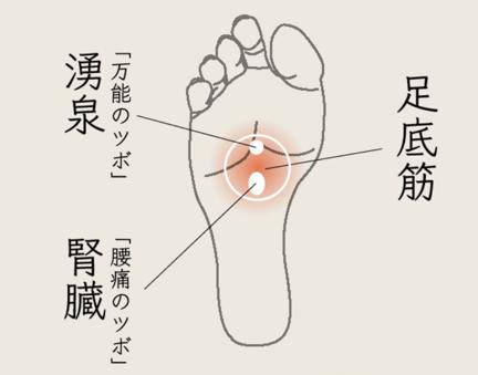 ラクに履ける理由1. 足裏の筋肉にアプローチ